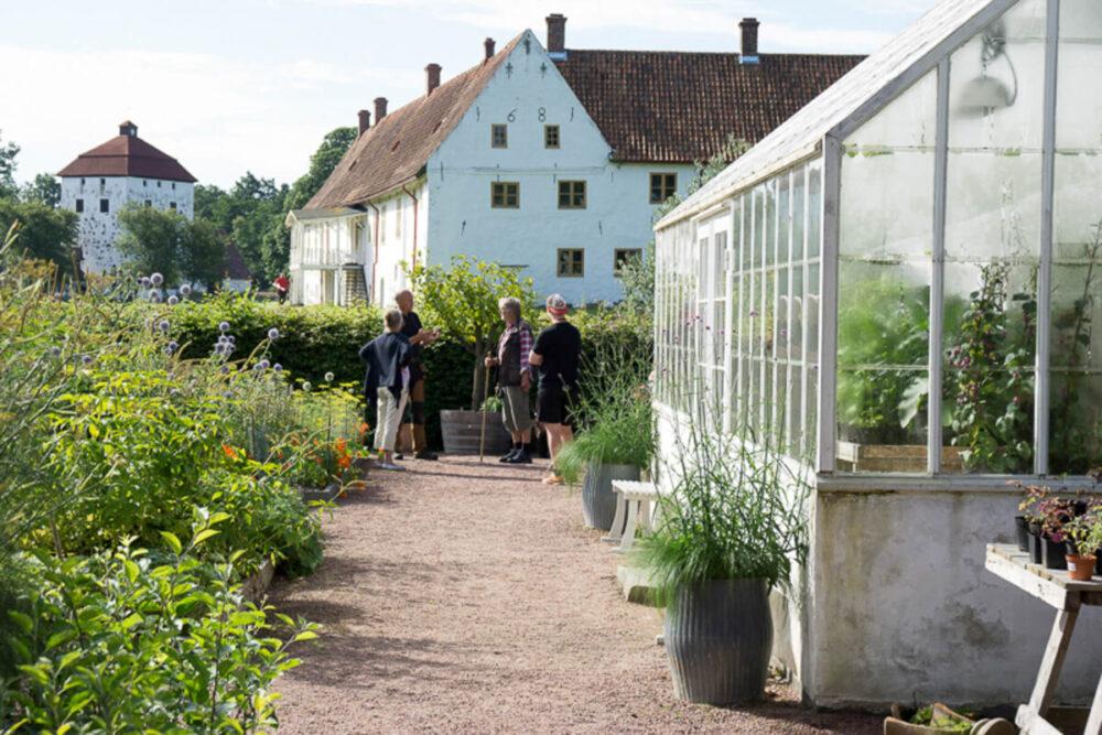 Fyra personer stor bredvid ett vítt växthus