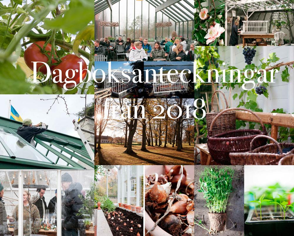 Dagboksbilder från växthusåret 2018