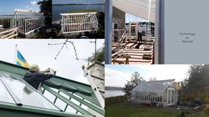 Några av de växthus vi byggde förra året.