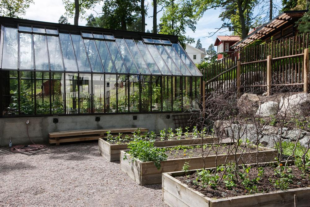Upphöjda jordbäddar i trä framför växthus.