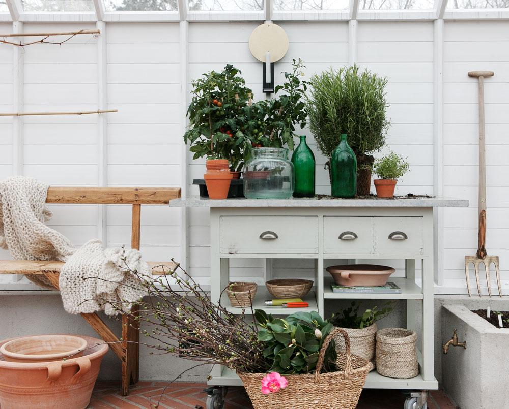 Upphöjda jordbäddar på våren i växthuset.