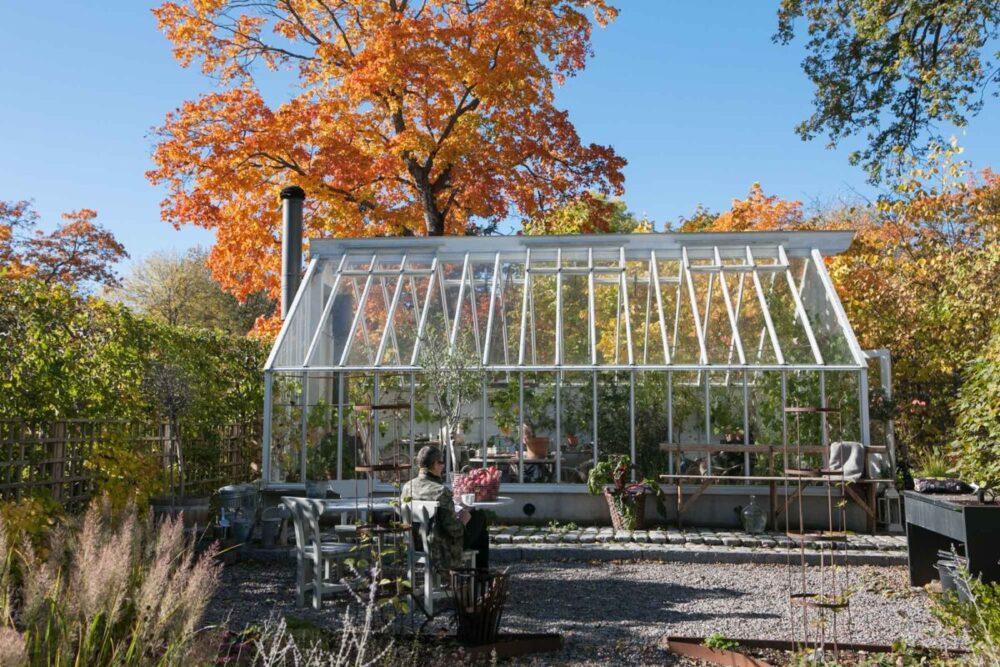 Växthus under eken i höstfärger.