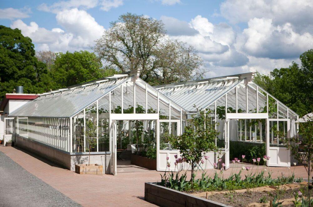 växthus bland höstlöv