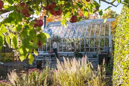 Växthus i trä och glas.