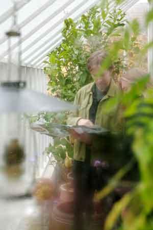 Man och kvinna bakom grönskan i växthus.