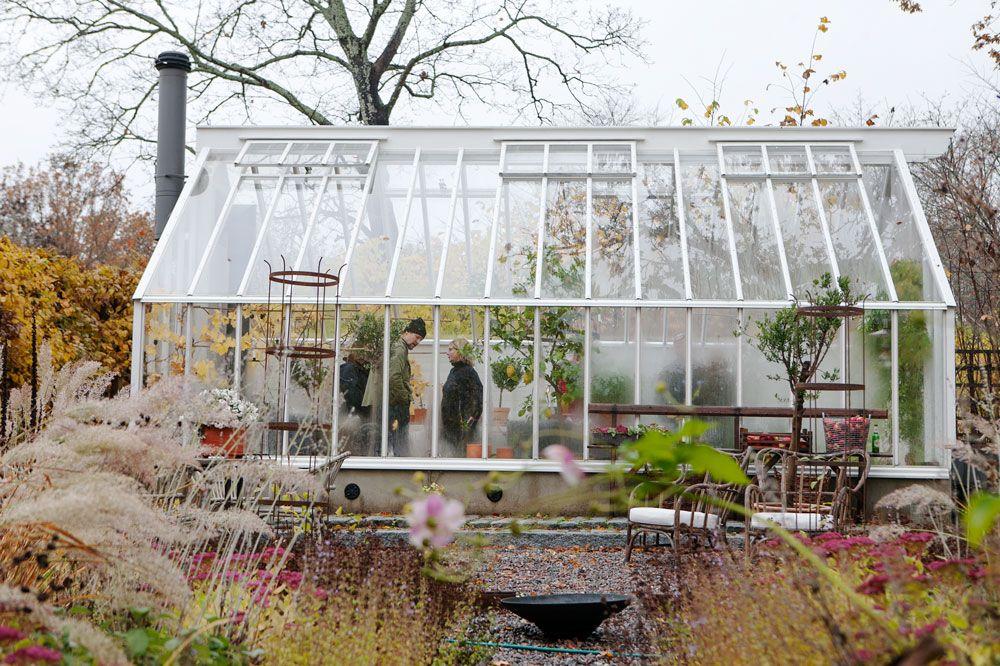 Vitt växthus i en trädgård i höstfärger.
