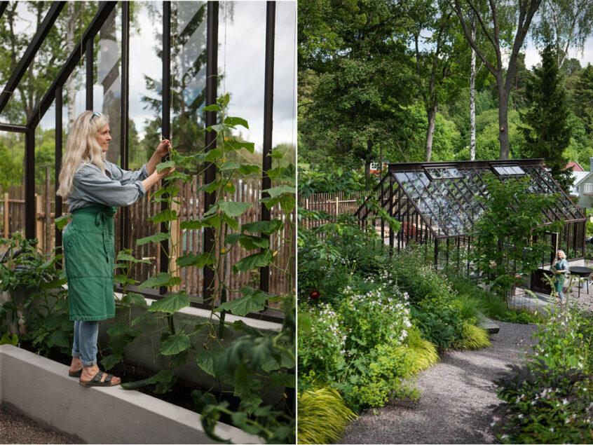Kvinna ovh växthus i lummig trädgård.