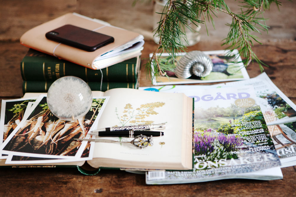 Böcker tidningar, anteckningsblock, pennor tillsammans med tallkvist på skrivbord.