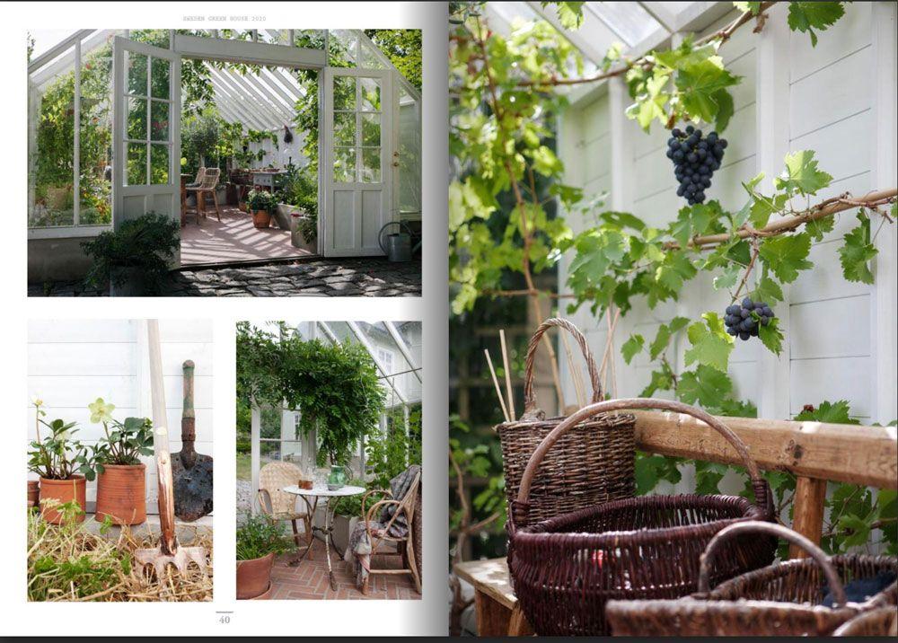 Bilder från växthus i guiden Skapa Stilen.