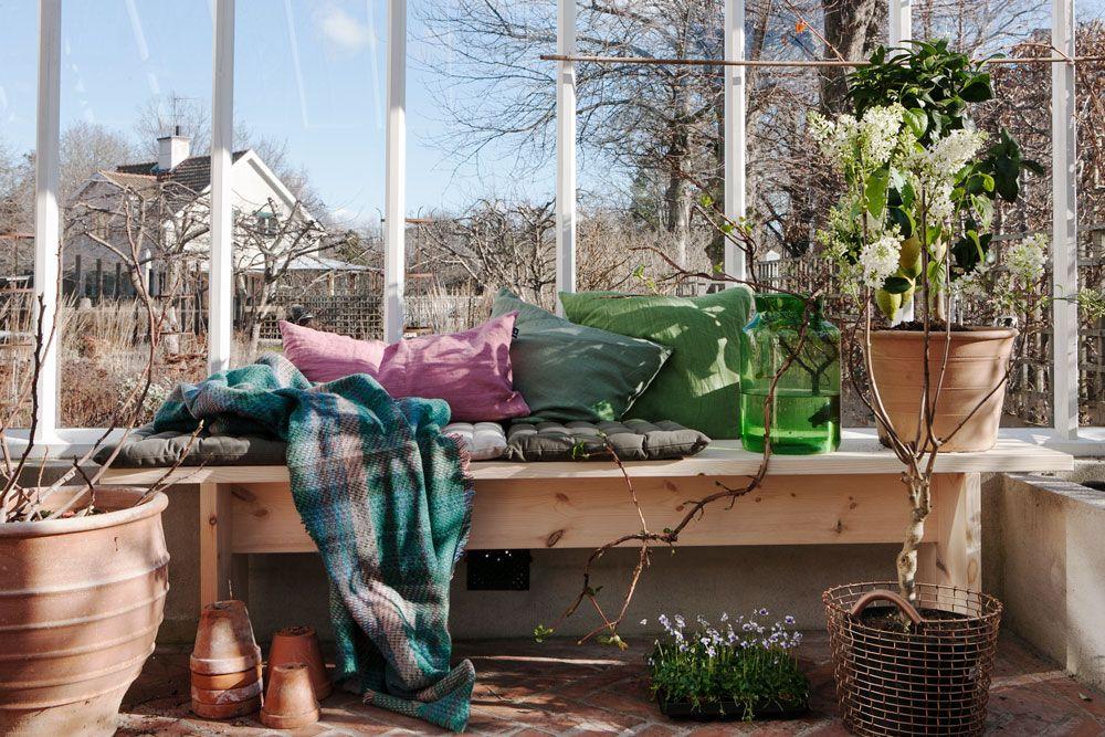 Sittbänk med kuddar och växer i växthus.