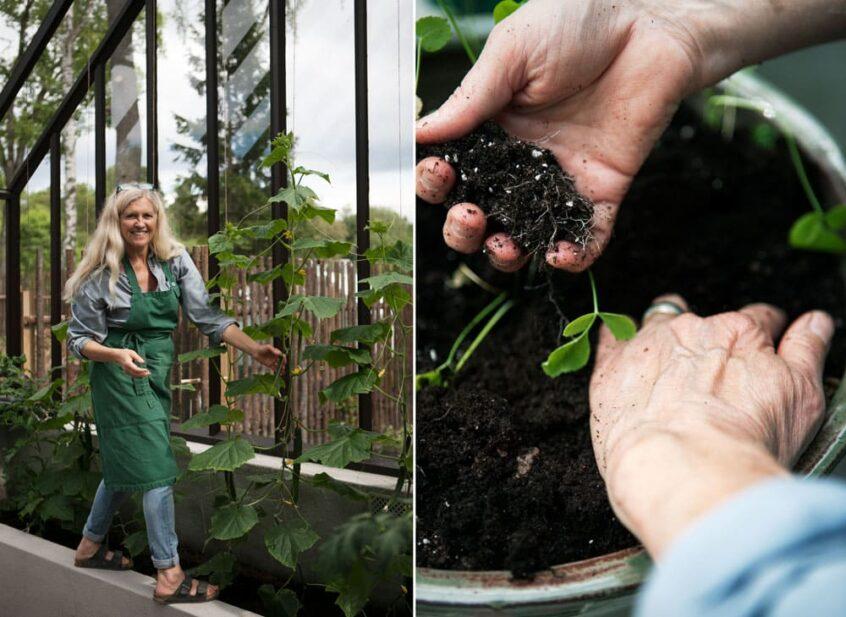 Kvinna i växthus och händer i jord.