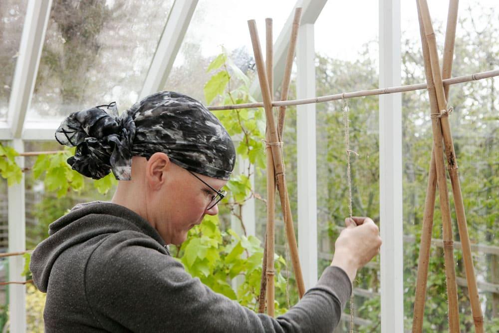 Kvinna binder upp växter med snöre mot bambustång.