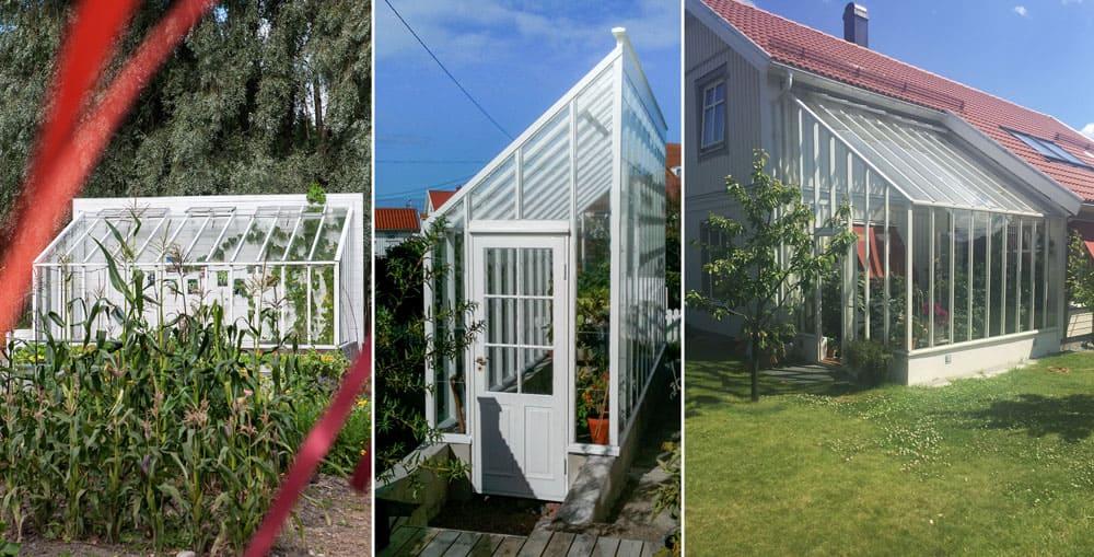 Tre växthus med pulpettak.