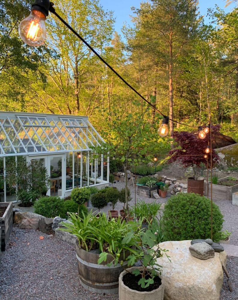 Ett vitt växthus i lummig trädgård.