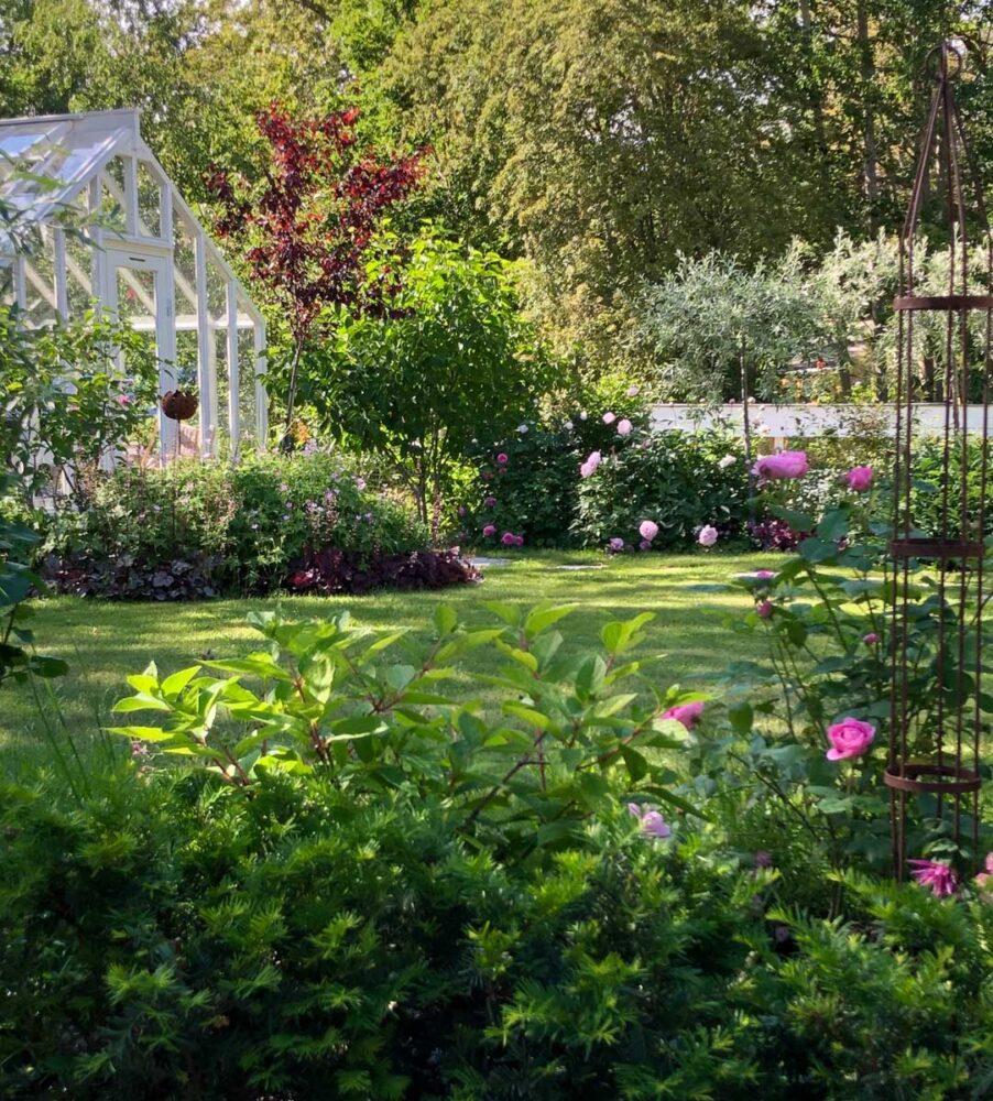 Växthus utan bygglov i stockholm