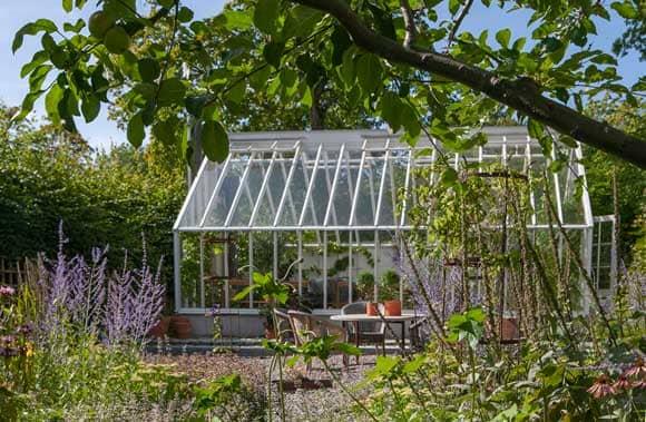 Vitt växthus i sensommarträdgård.