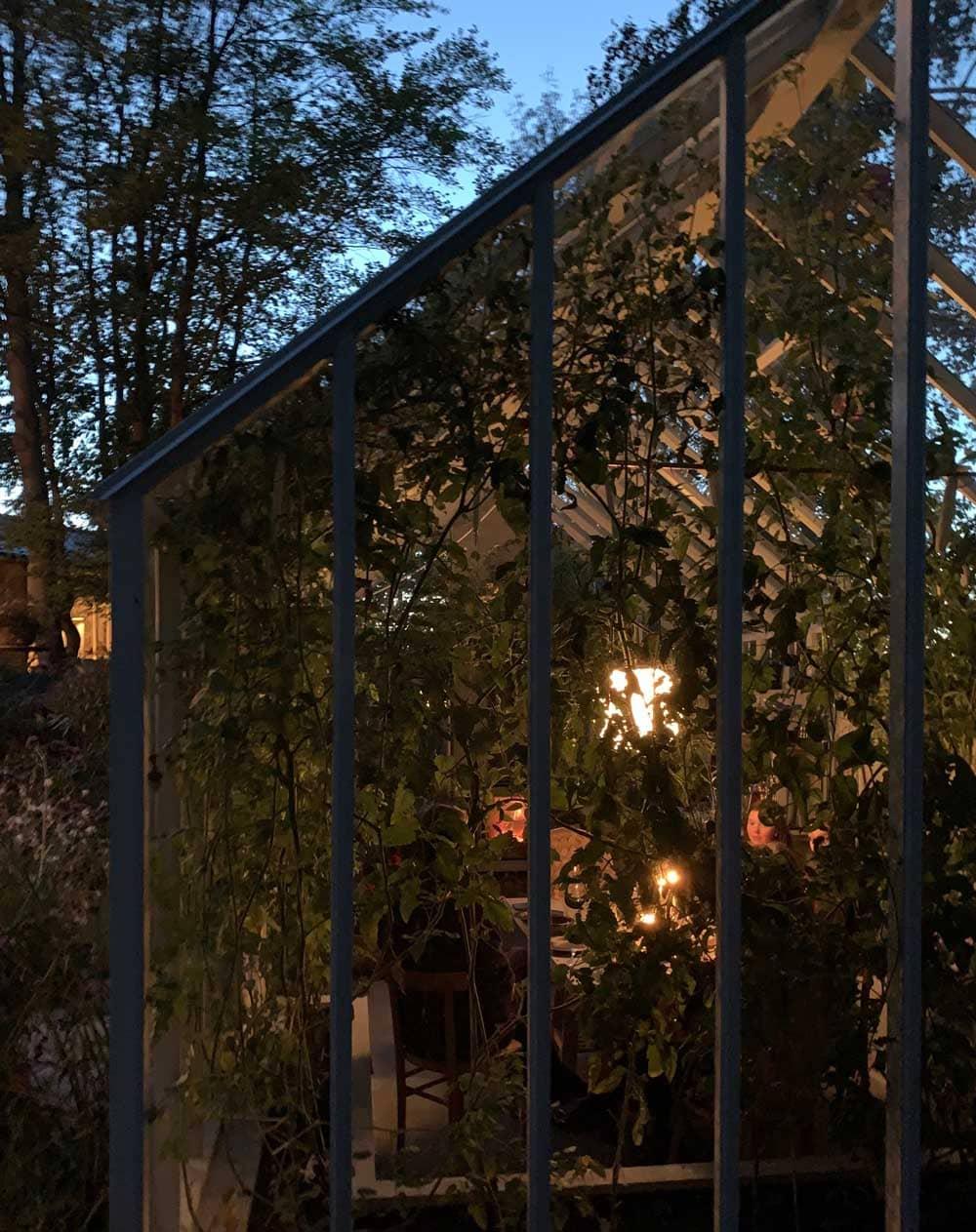 Kvällsljus och växthus.