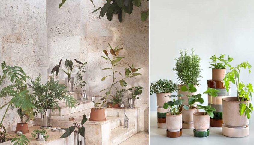 lerkrukor fyllda med växter