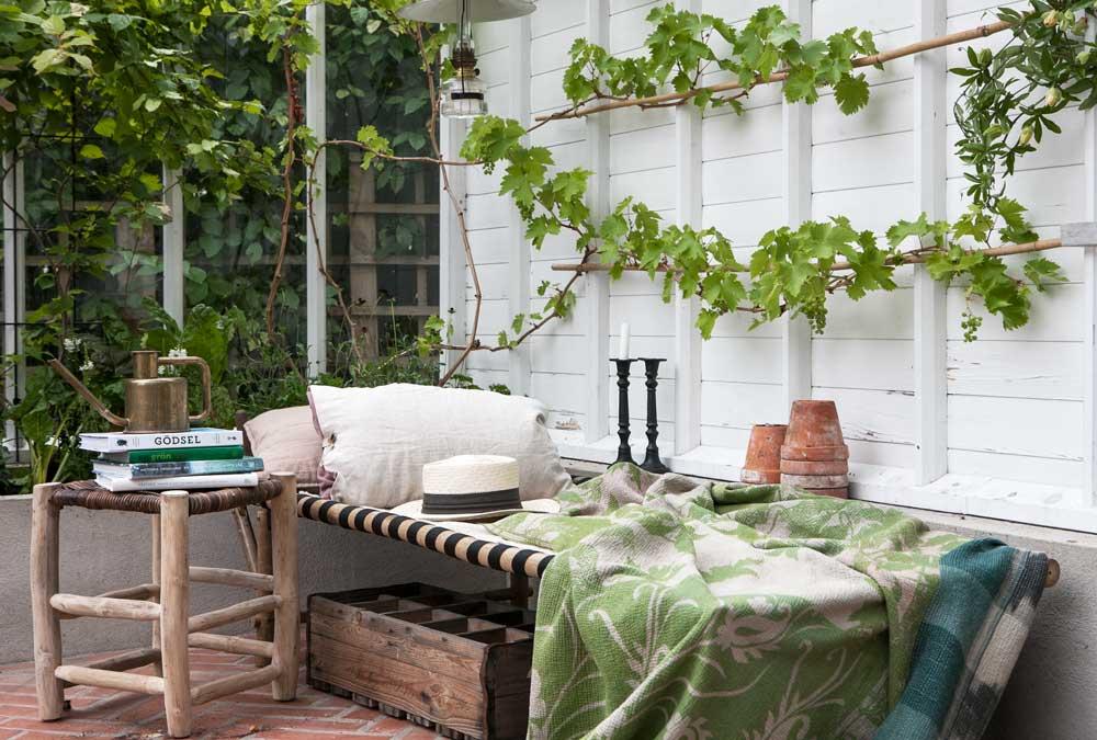 Dagbädd i växthus