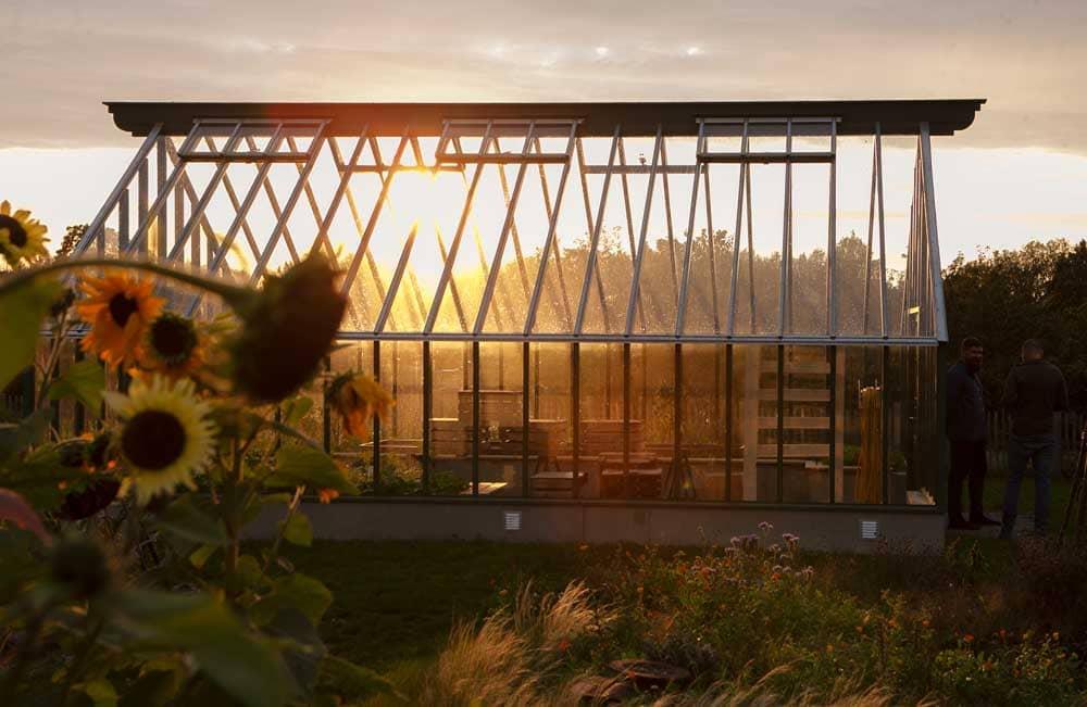 Växthus i solnedgång.