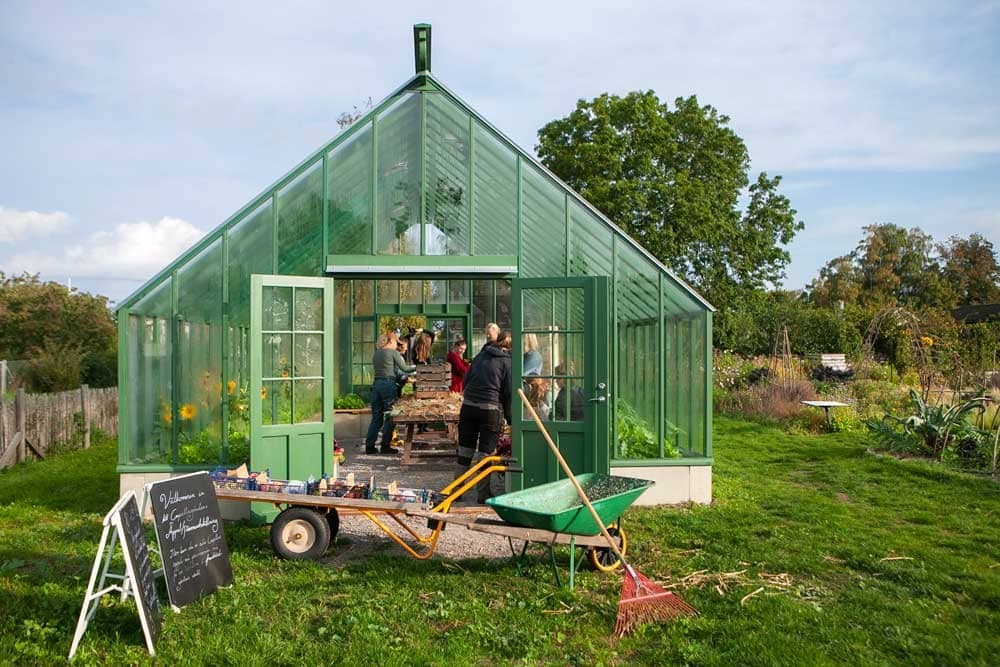 Grupp med människor i grönt växthus.