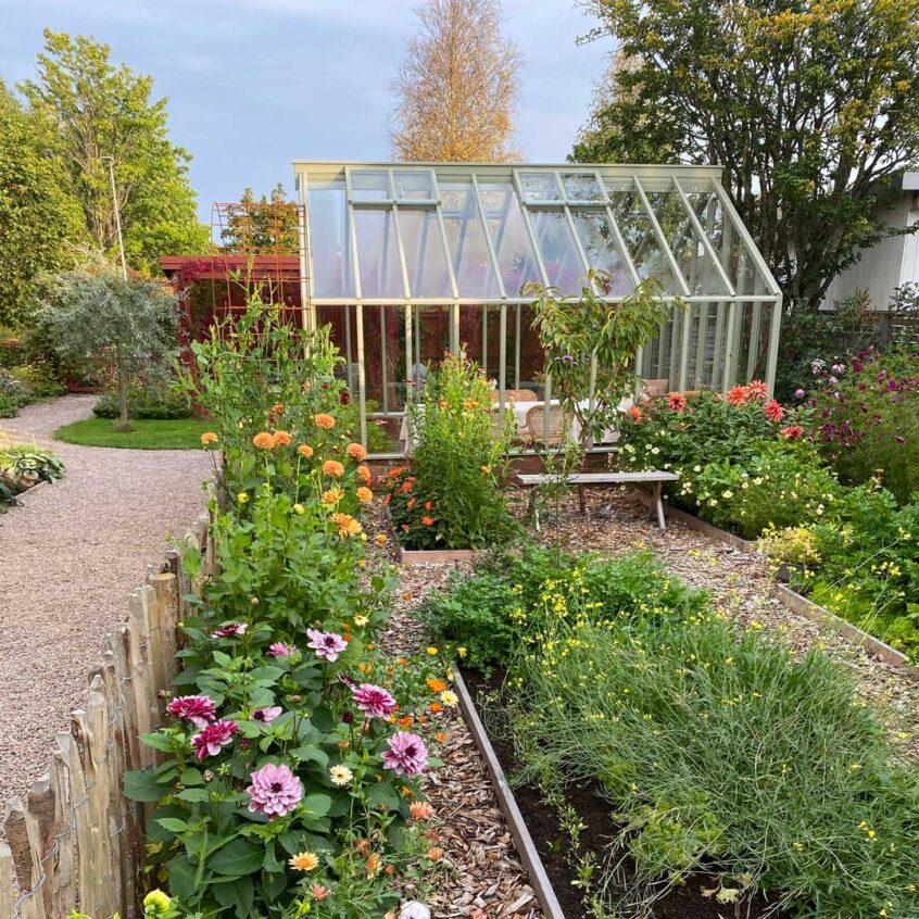 Litet växthus i lummig trädgård.