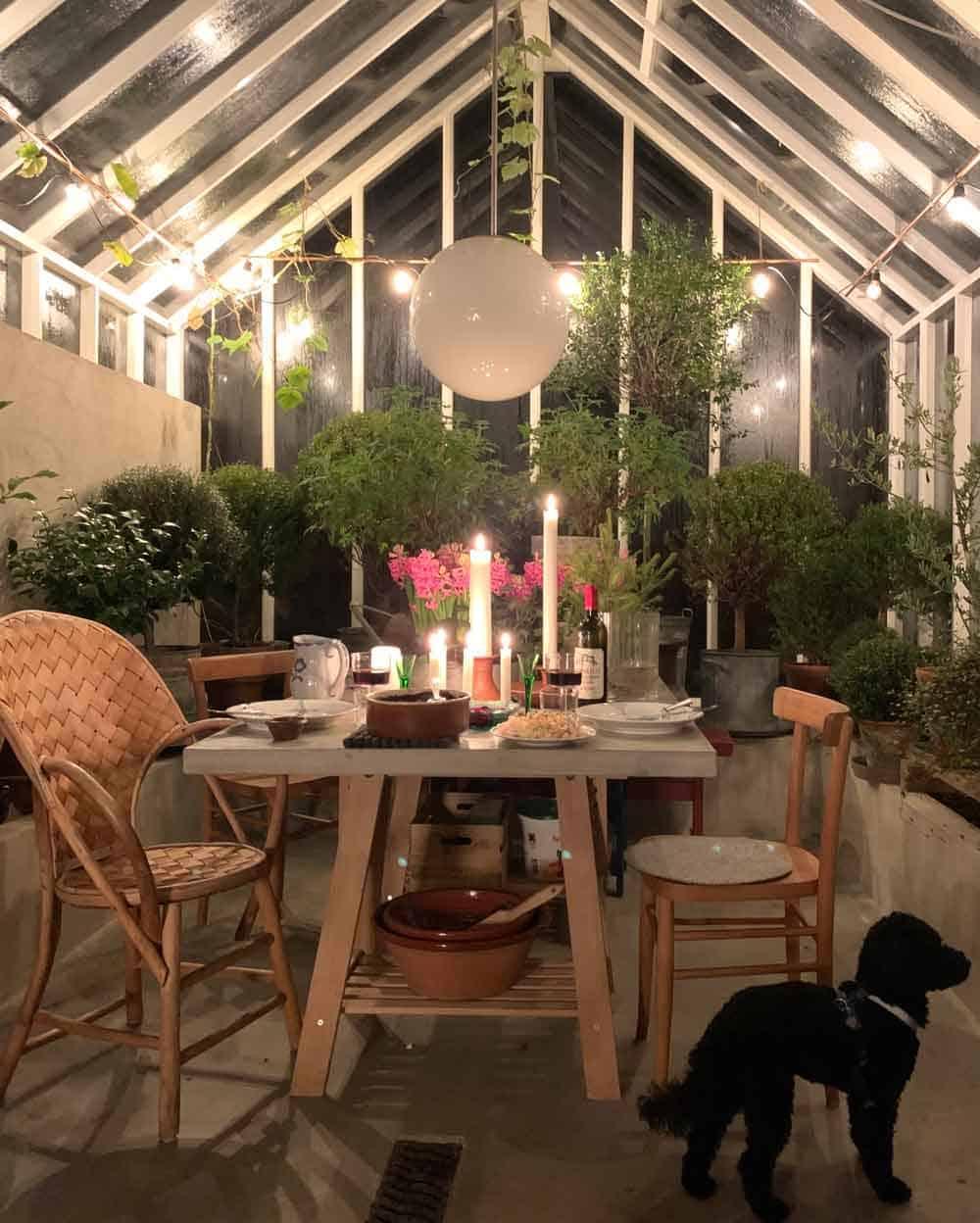 Uppdukat bord och julmat i växthus.