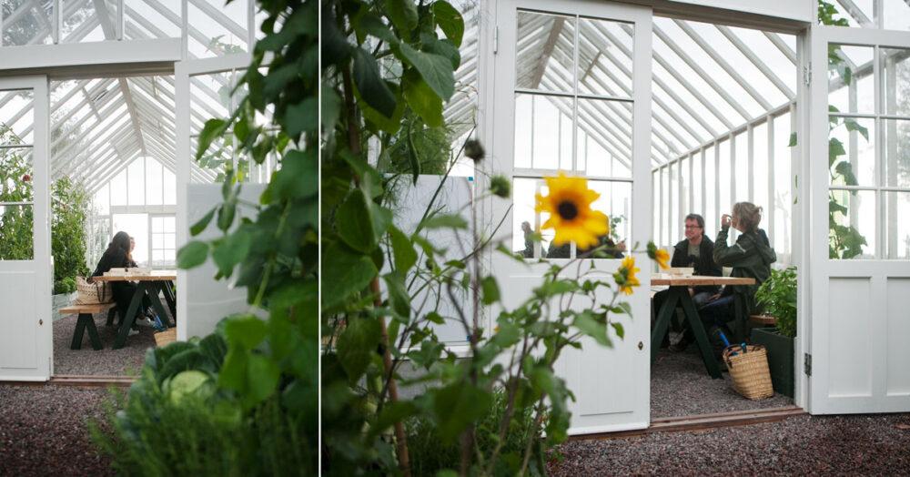 Människor runt ett bord i växthus.