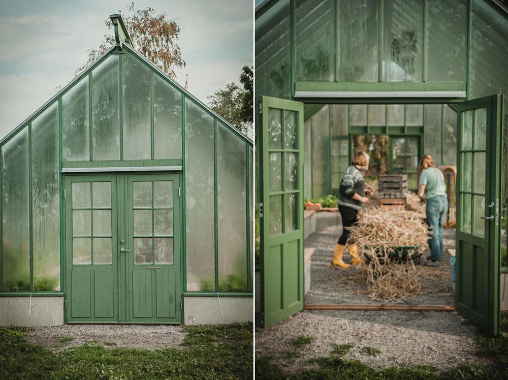 Dubbeldörrar på växthus.
