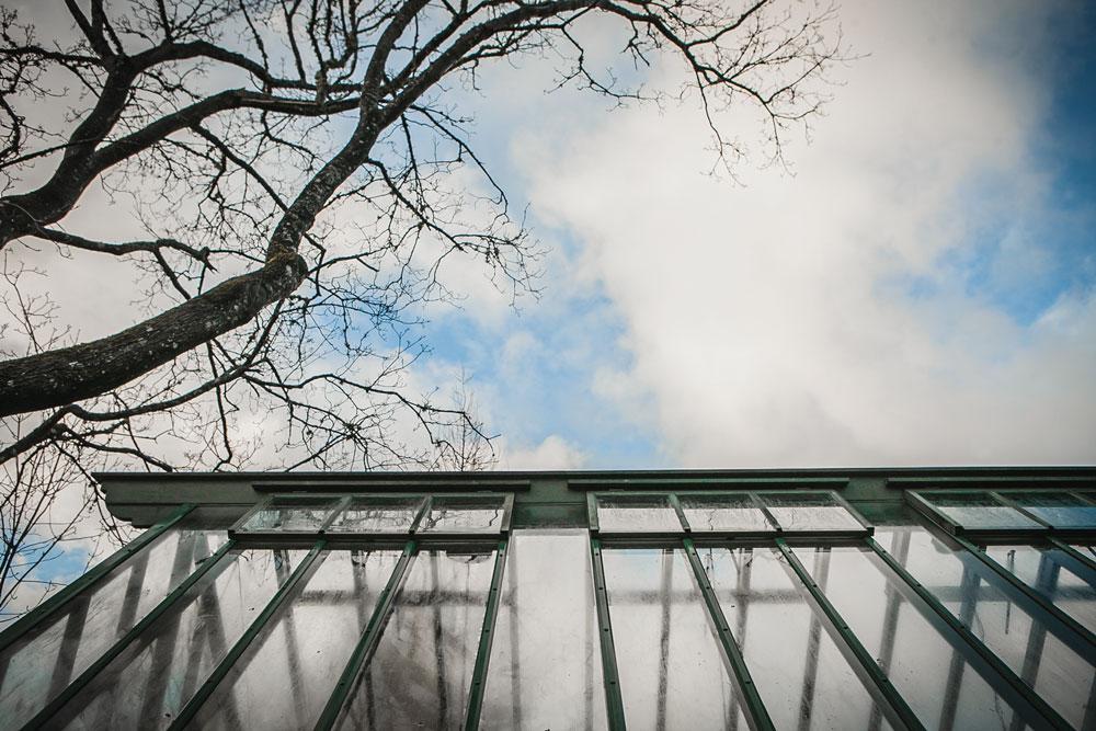 Vädringsfönster på växthus.