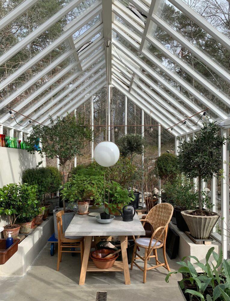 ett bord i växthuset