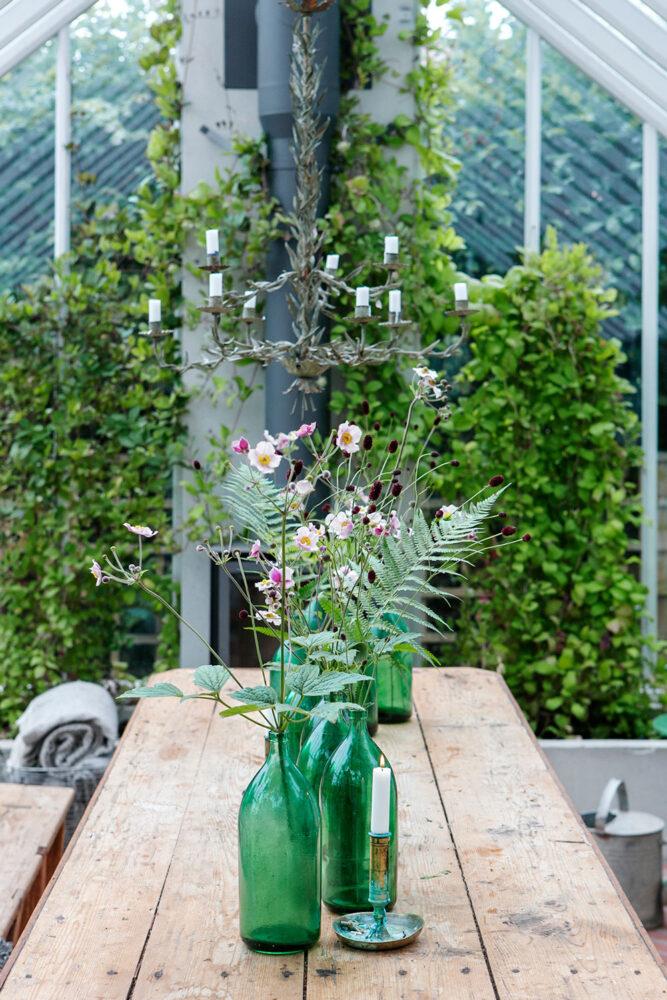 Rad med flaskor som vaser på bord i växthus.
