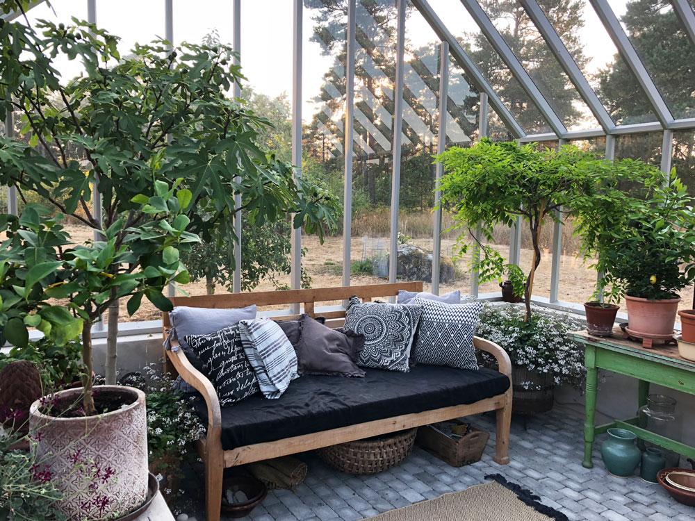 Träsoffa i växthus