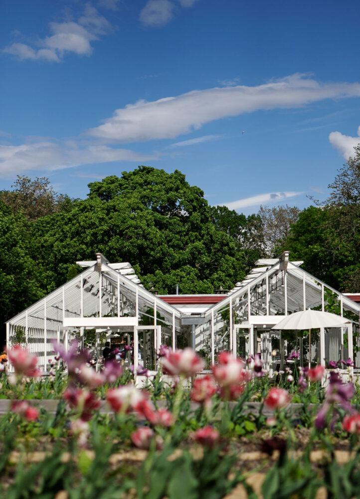 Arkitektritat växthus på en handelsträdgård