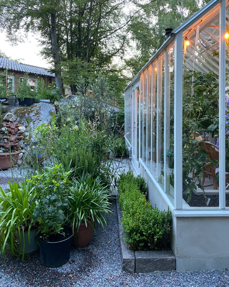 Växthus från sidan.