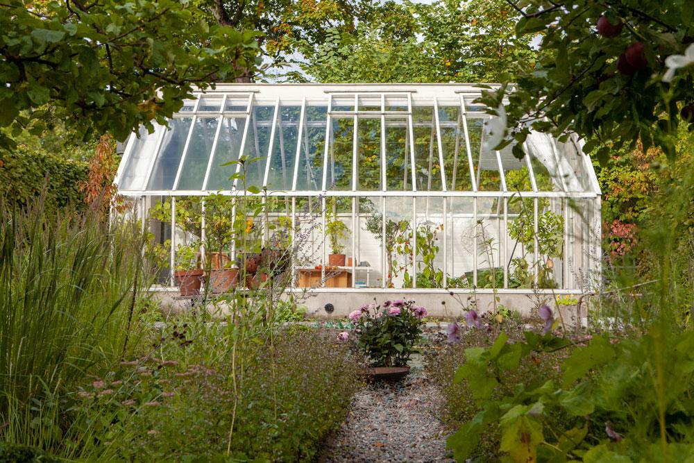 Vott växthus i lummig trädgård.